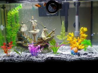 Blade Aquarium Glass Algae Scraper Cleaner Replacement Blades X 5 Coral Reef