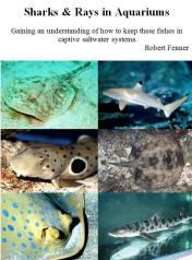 Blktipshkfaqs new print and ebook on amazon by robert bob fenner fandeluxe Images