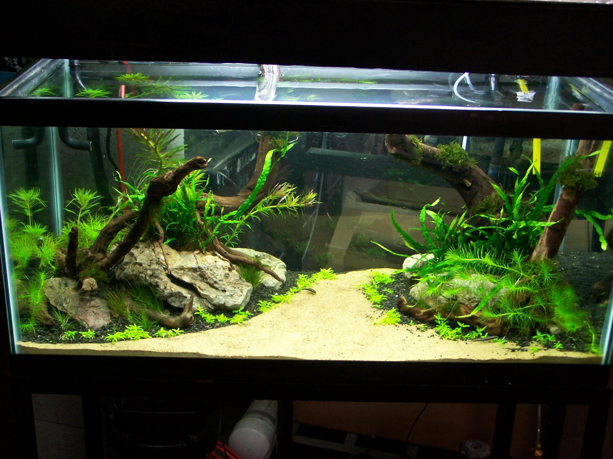 Bateau Decoration Aquarium
